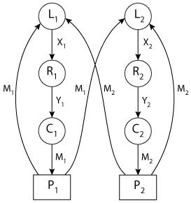 Oscillatory behavior in enzymatic control processes (Model
