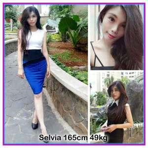 Selvia-web