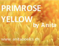 Primrose Yellow by Anita: C'est la couleur que j'préfère
