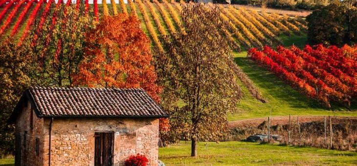 Atmosfere d'Autunno | I luoghi da visitare a Modena e dintorni