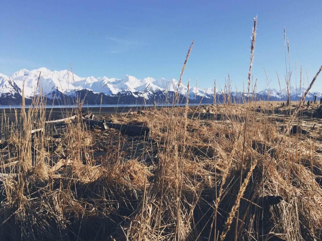 Tonsina Point Hike, Seward, Alaska