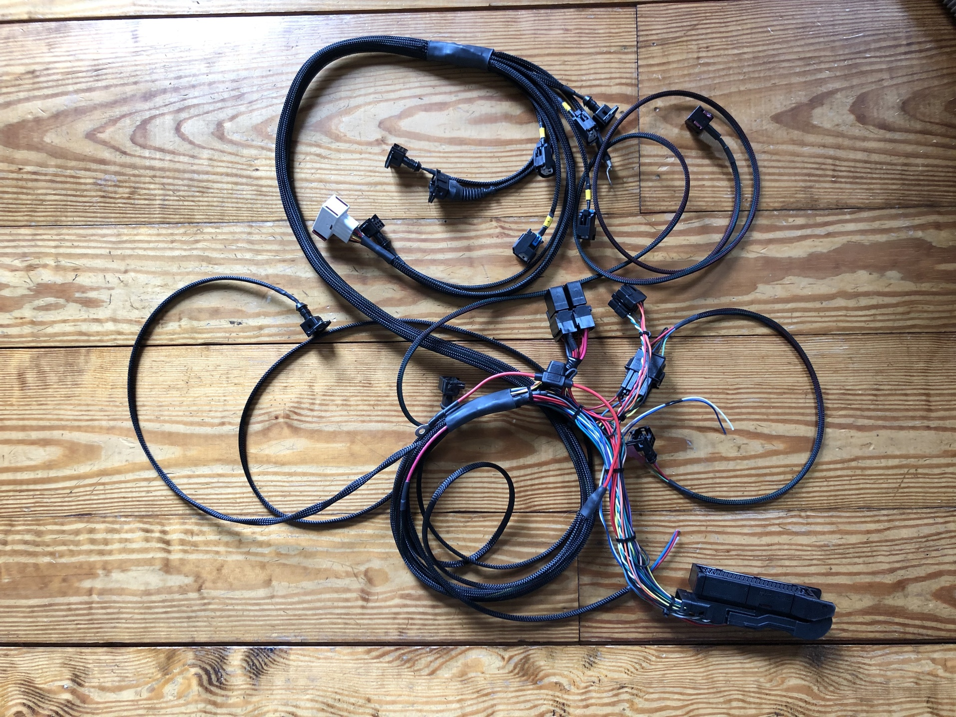 hight resolution of new trionic 5 wire harness