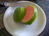 Guayaba, or Guava, Fruit