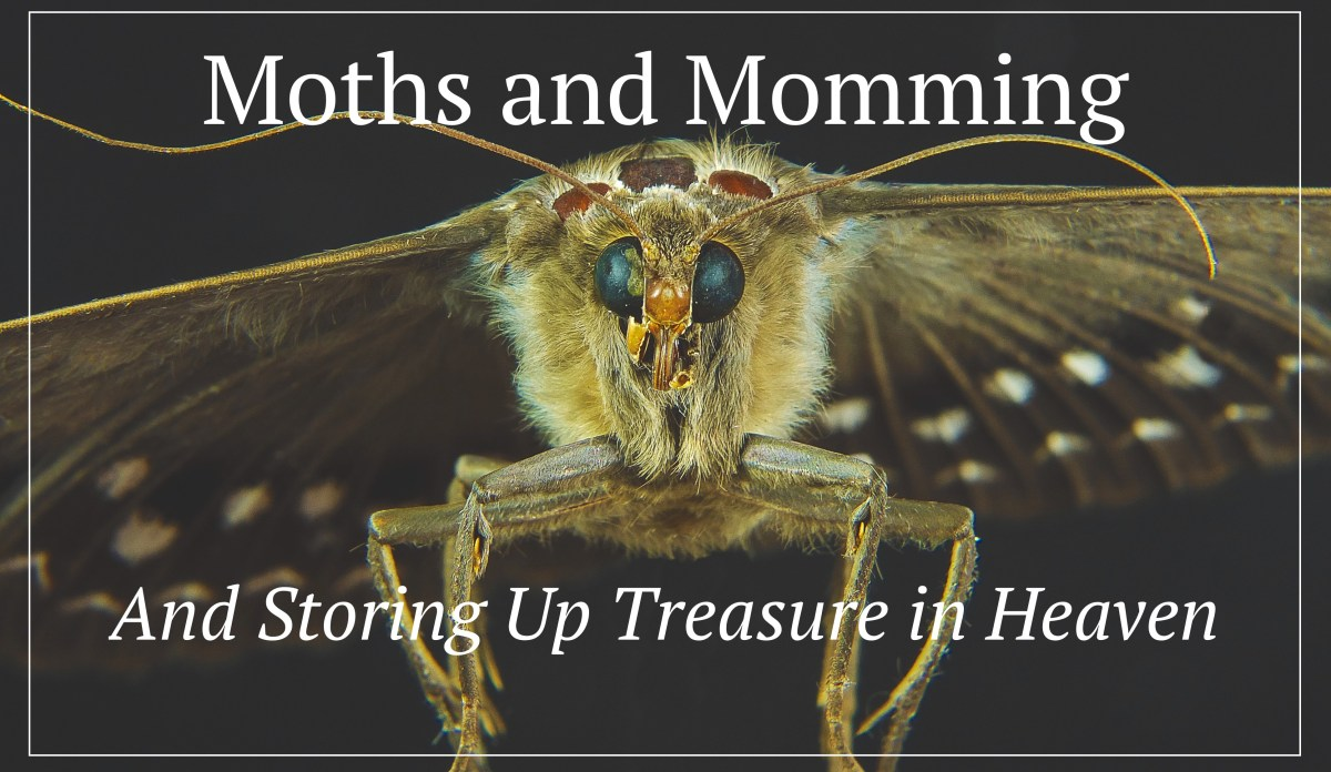 Moths, Momming, and Storing Up Treasure in Heaven