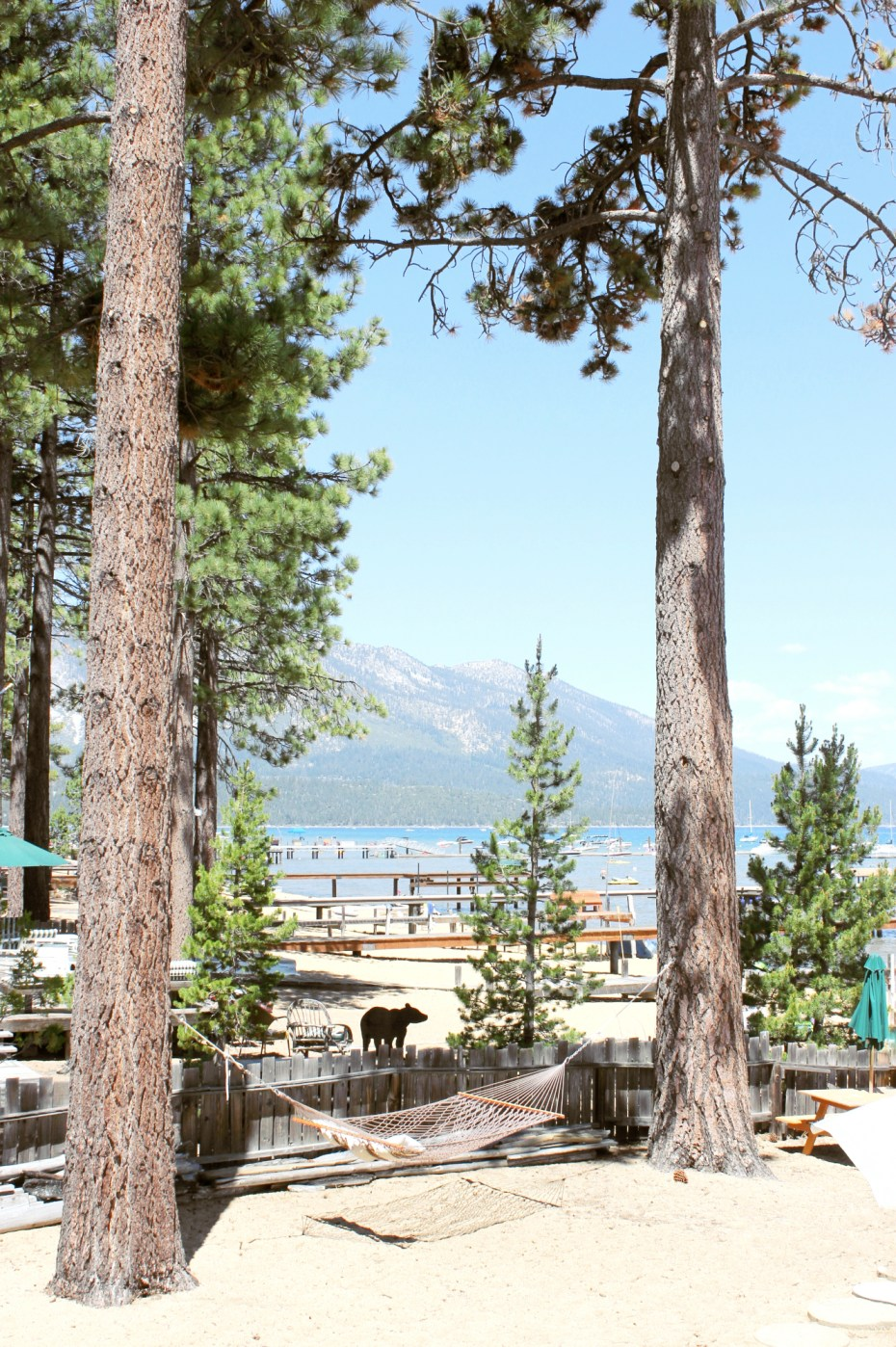 Tahoe Guide on Modern Daydream Living
