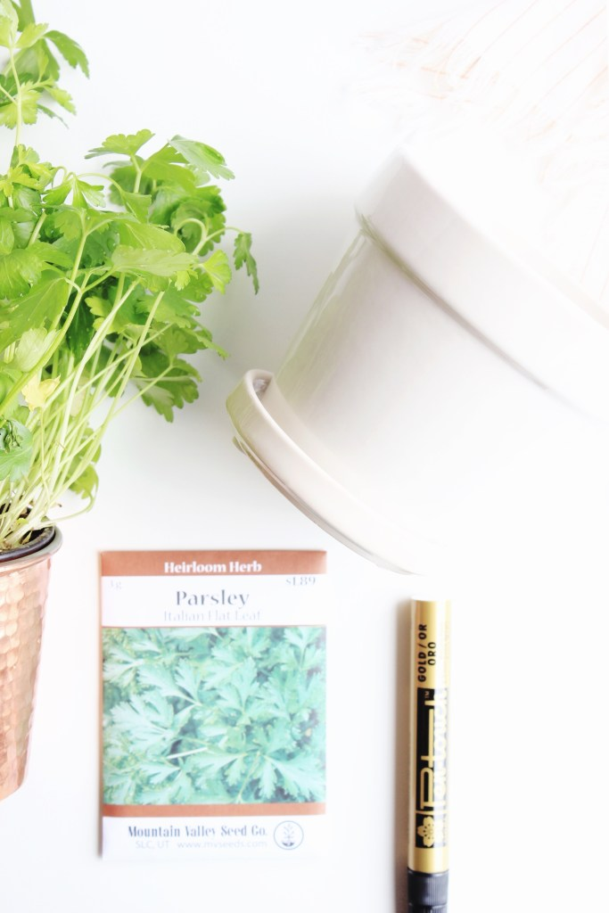 IMG_How To Make An Herb Garden
