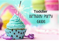 Toddler Birthday Party Guide