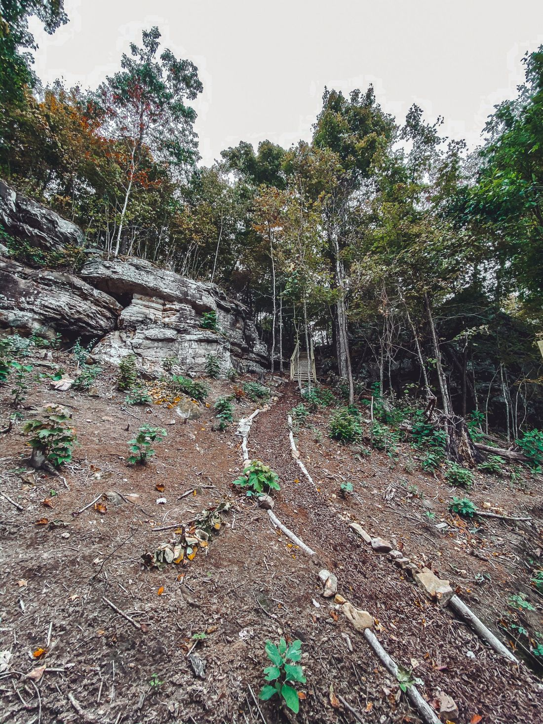 Glamping in Tennessee by popular Nashville lifestyle blog, Modern Day Moguls: image of a marked trail.