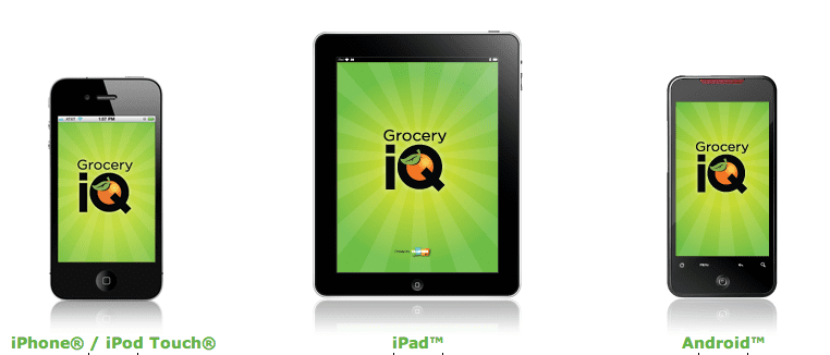 electronic grocery list