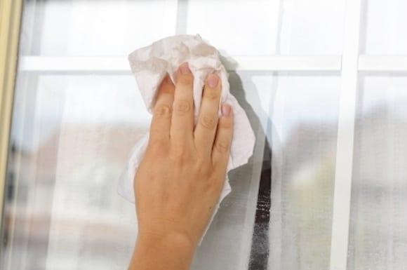windowwashing