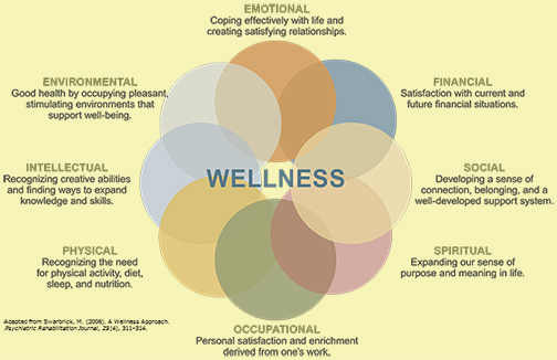MDMS_8Wellness_pic2