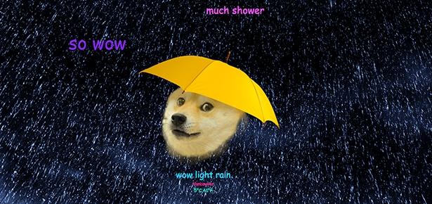 Shiba Inu Cute Desktop Wallpaper Best Weather App Ever Modern Dog Magazine