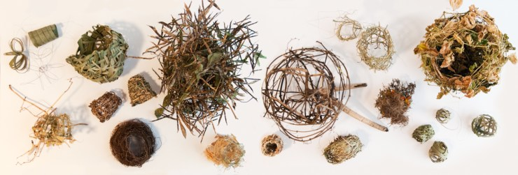 Nest 4