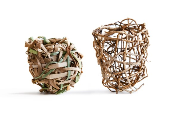 Ross Belton Nest 2