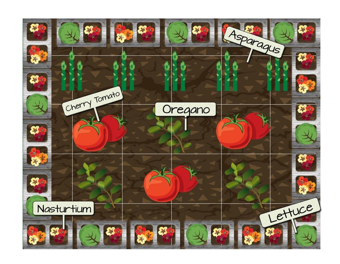 Raised Bed 10 - Cherry Tomatoes, Oregano, Lettuce, Nasturtium, and Asparagus