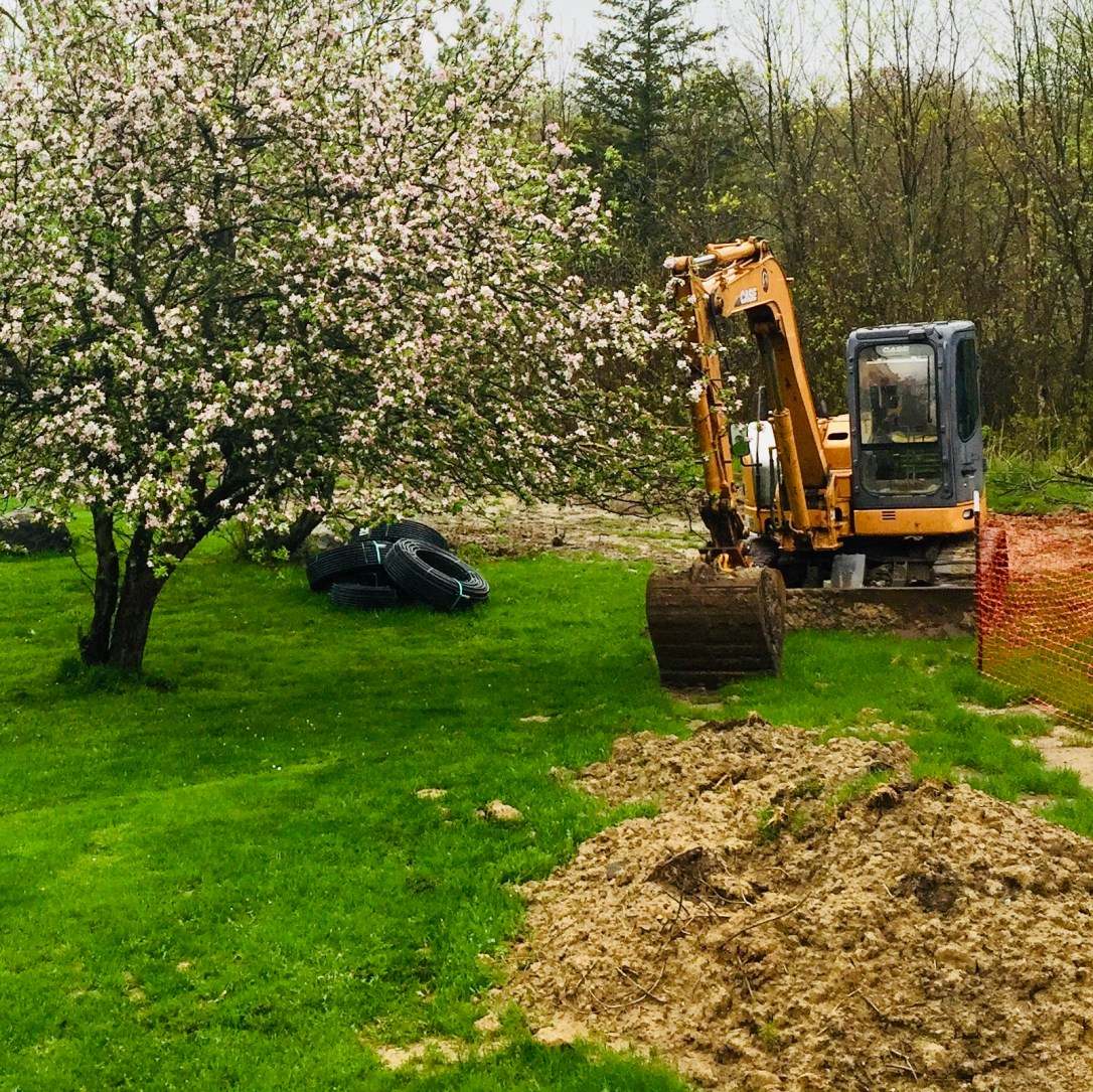Geothermal coils and backhoe digging next to apple tree