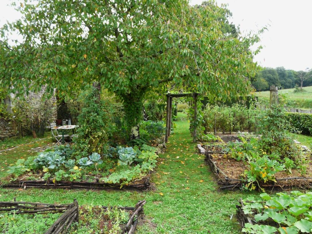 Unlock The Secret To A Perfect Garden Layout Modern Frontierswoman