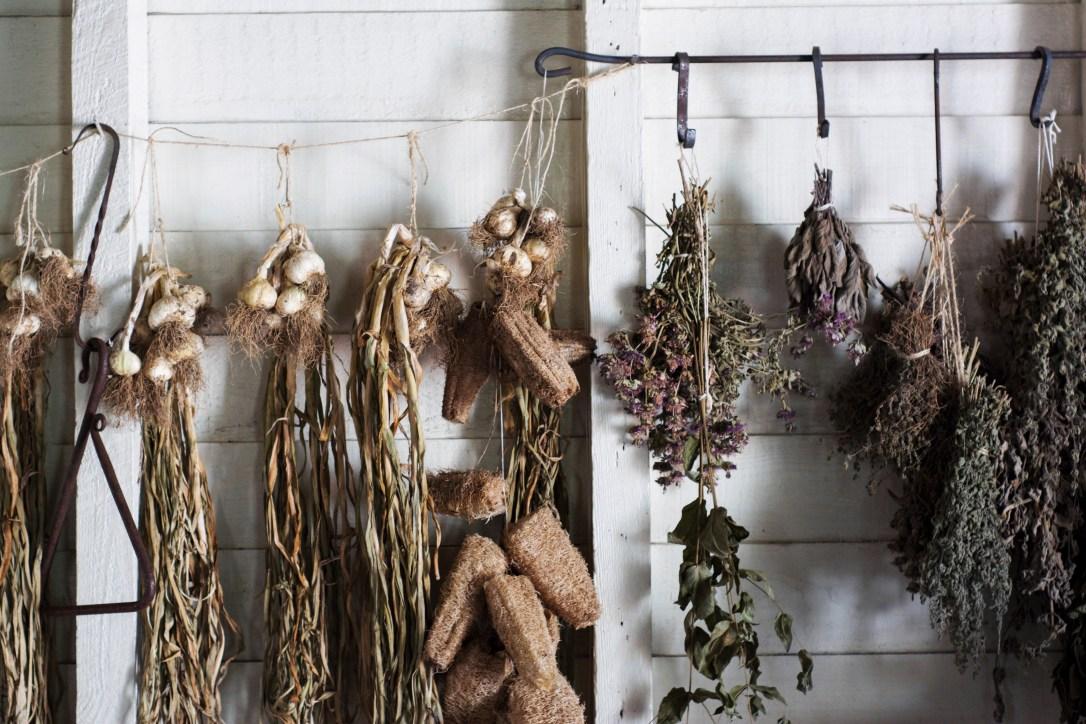 Hanging herbs vegetables garlic air drying