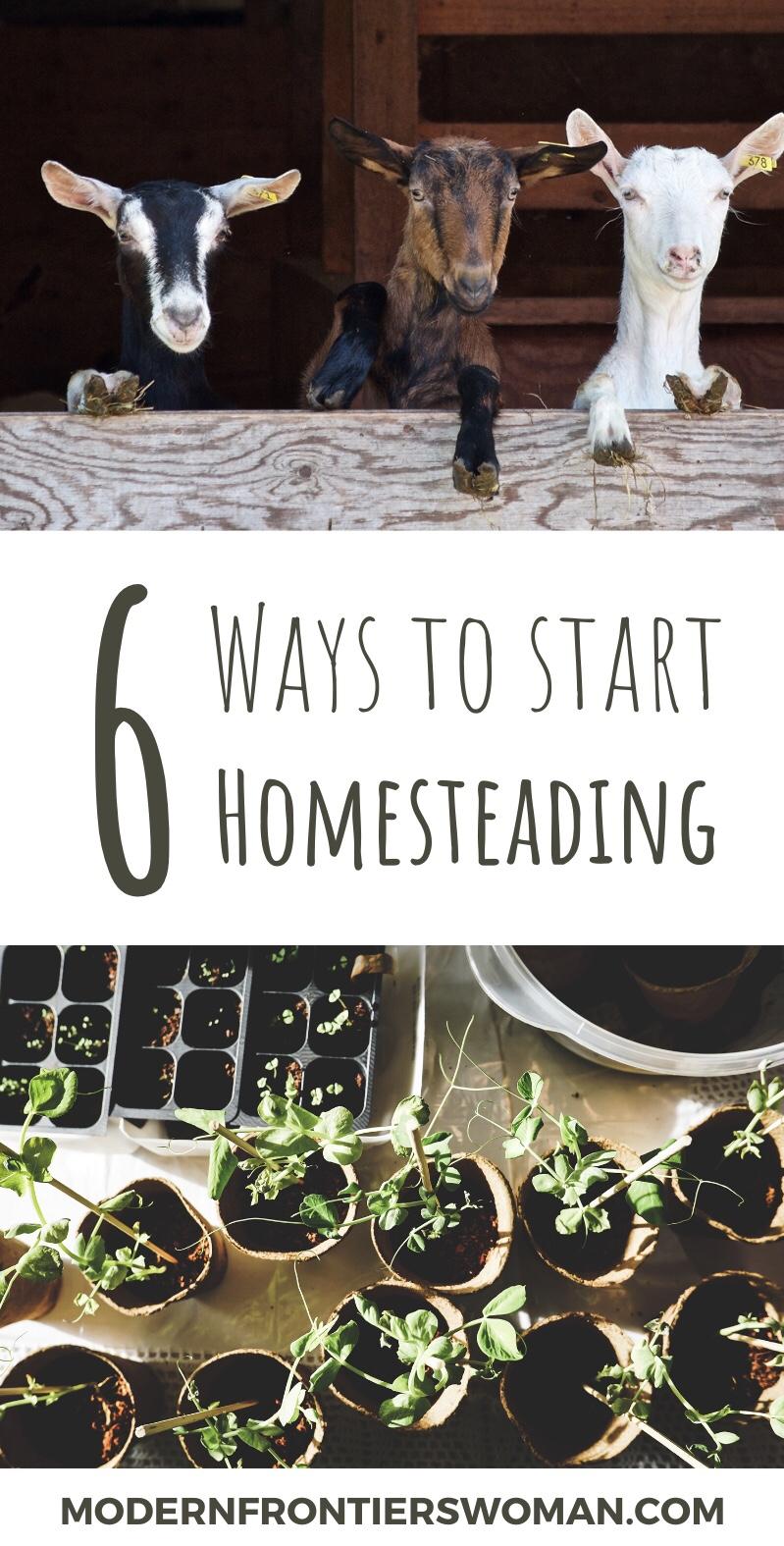 6 Ways to Start Homesteading