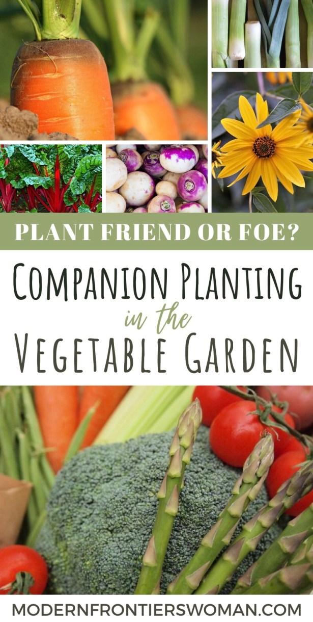 Plant Friend or Foe?