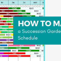 How to Make a Succession Garden Schedule