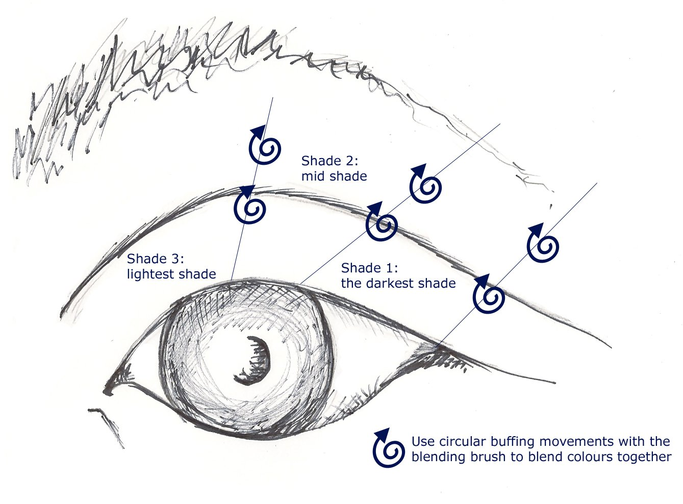 eye shadow diagram