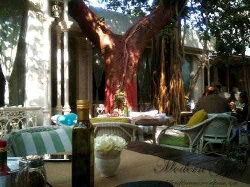 Olive Bar and Kitchen, Italian restaurant, Delhi