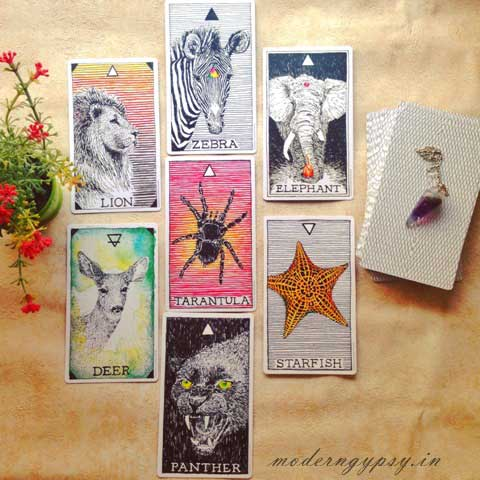 book tarot reading custom Tarot email reading