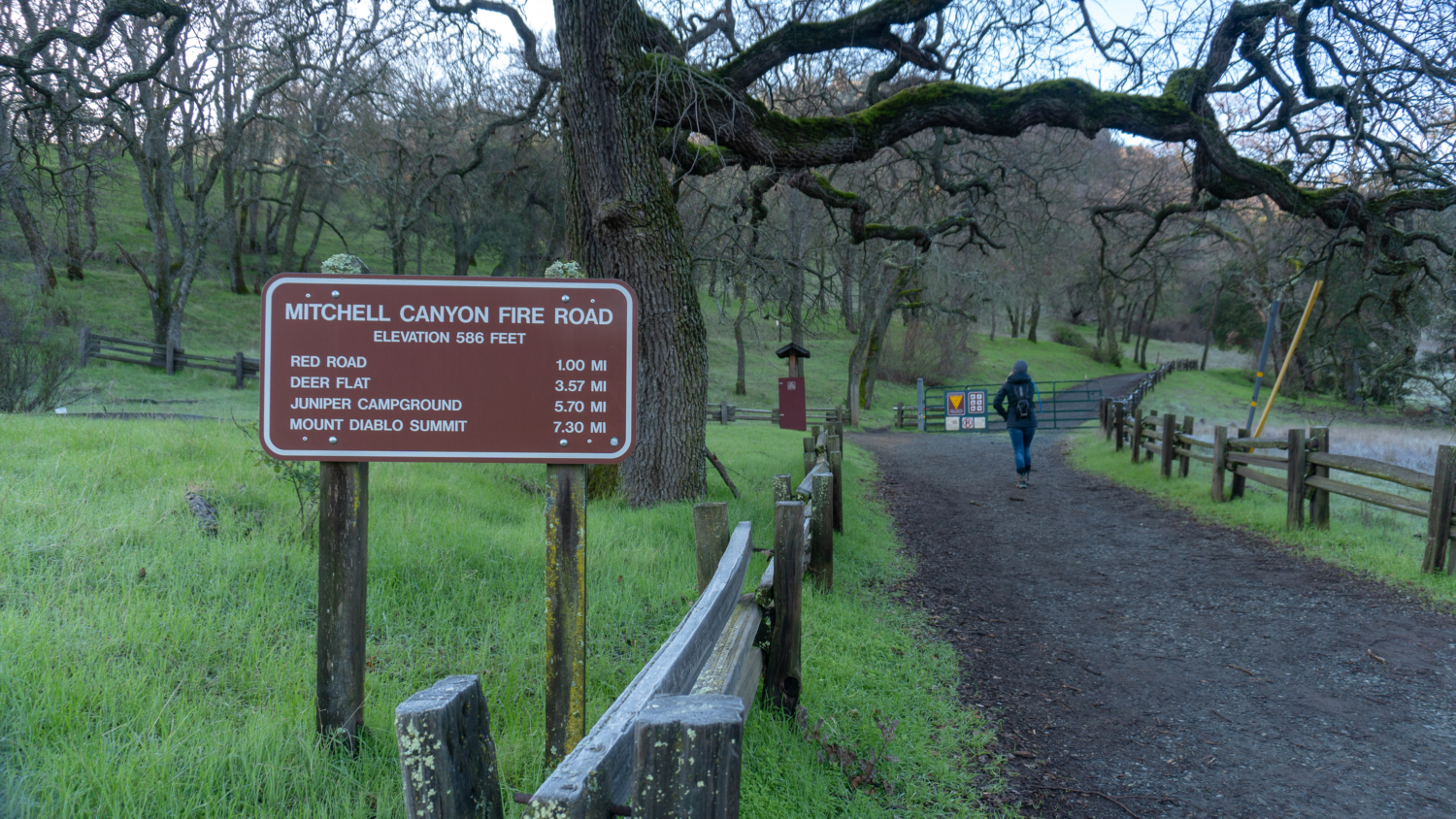 From beautiful beaches to majestic mountains, here's the best state park in every state across the united states. Mount Diablo Summit Via Mitchell Canyon Modern Hiker