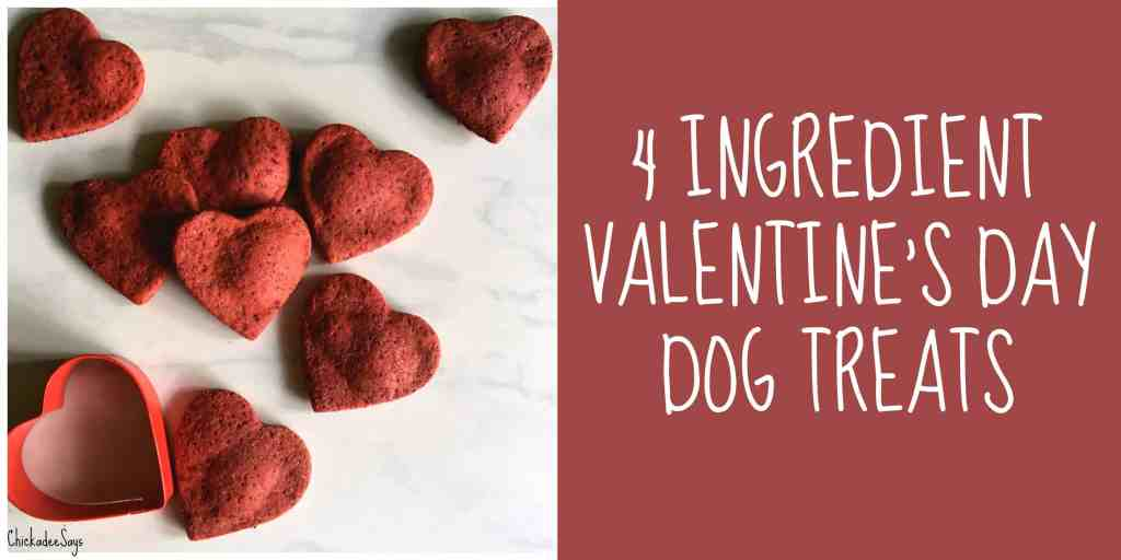Beet Valentine S Day Dog Treat Recipe Habits Of A Modern Hippie