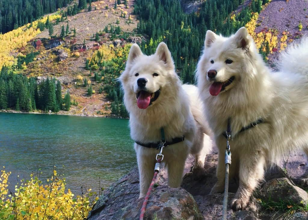 Tink and Meek Maroon Bells Lake