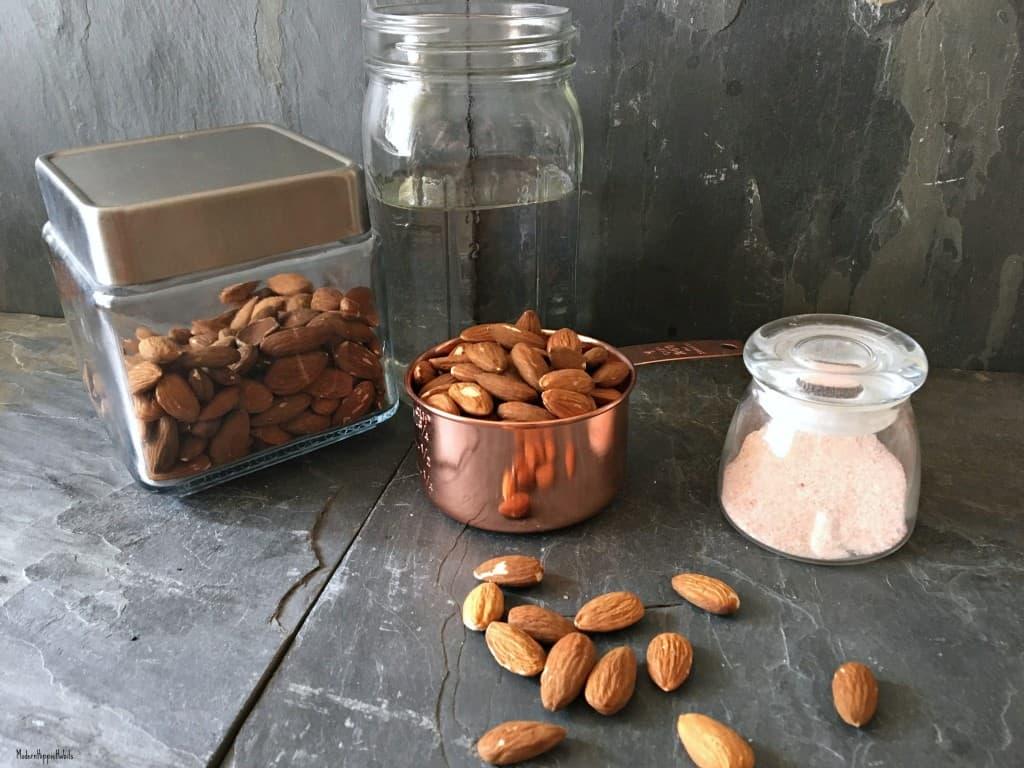 DIY Simple Nut Milk Recipe Ingredients
