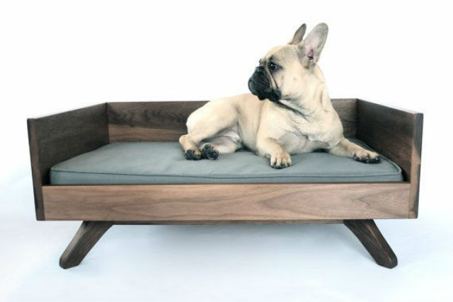 Amazing beds for pets
