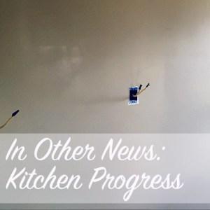 In Other News: Kitchen Progress   Modern Home Economics