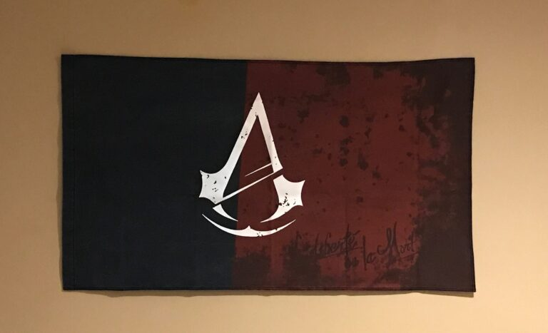 Assassins Creed Unity Flag