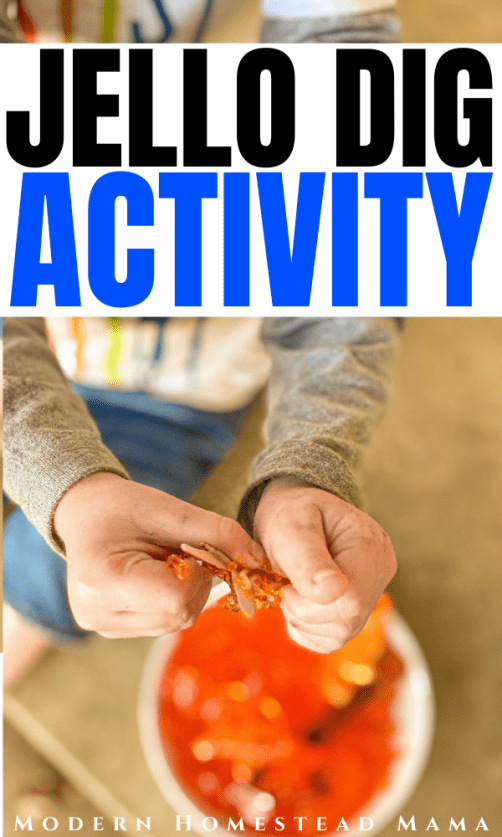Jello Dig Activity for Babies, Toddlers, & Kids | Modern Homestead Mama