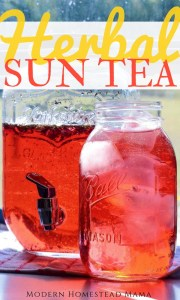 Herbal Sun Tea Recipe - Hibiscus Peppermint