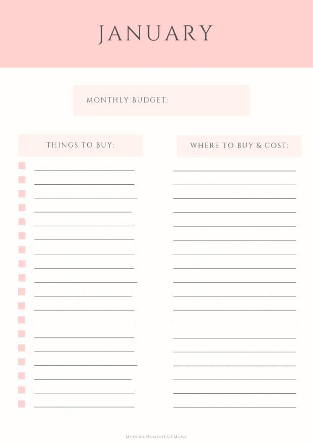 Baby Budget Worksheet - Pink