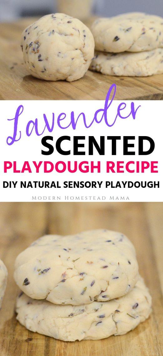 Lavender Scented Playdough Recipe (DIY Sensory Playdough) | Modern Homestead Mama