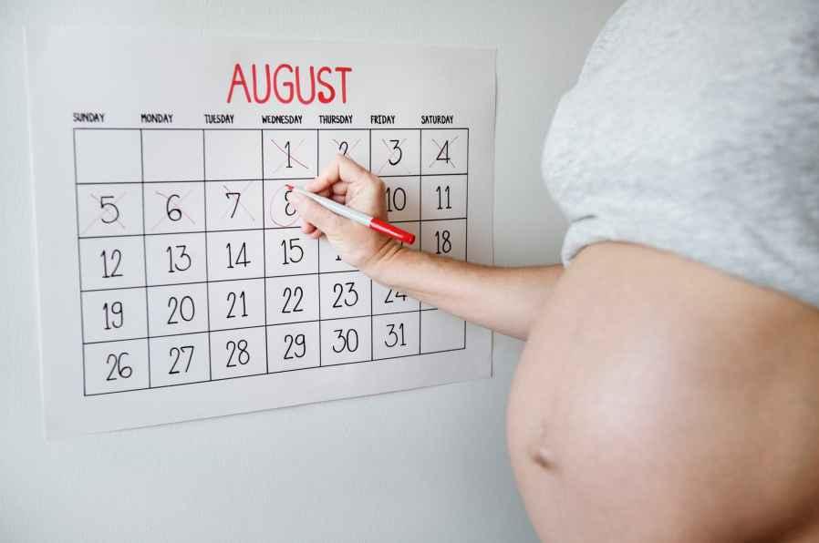Documenting Each Week in Pregnancy