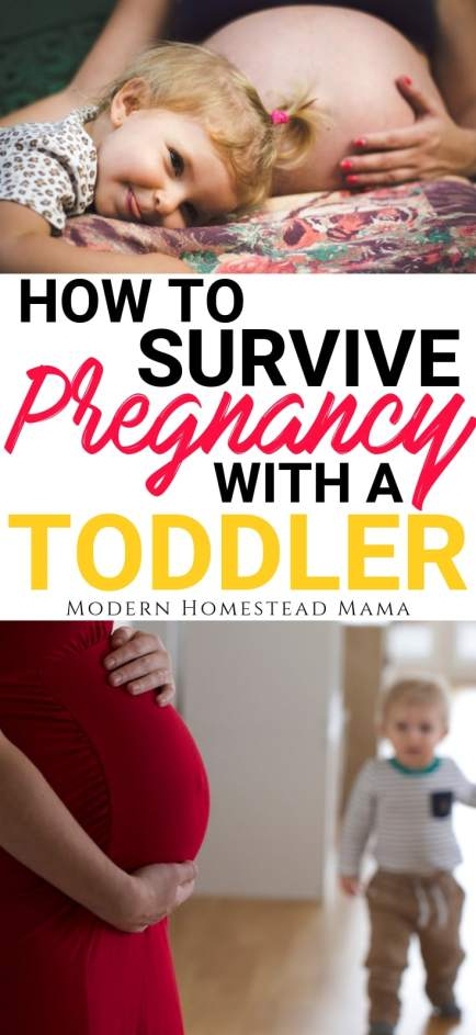 How To Survive Pregnancy With A Toddler   Modern Homestead Mama