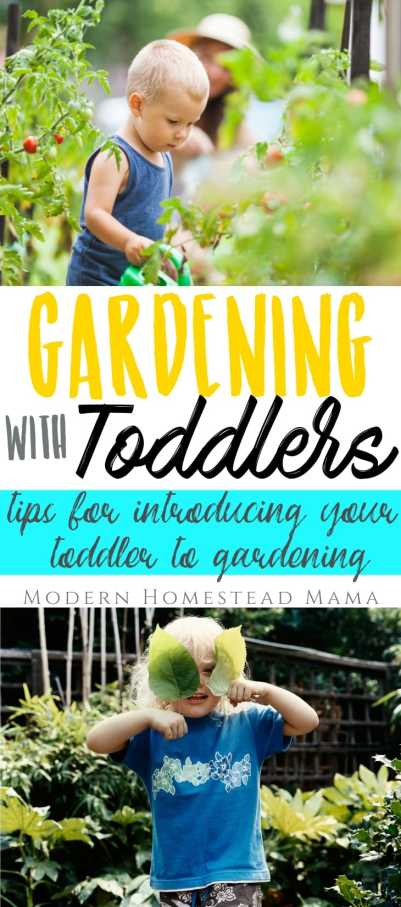 Gardening With Toddlers (Tips For Getting Your Toddler Involved) | Modern Homestead Mama