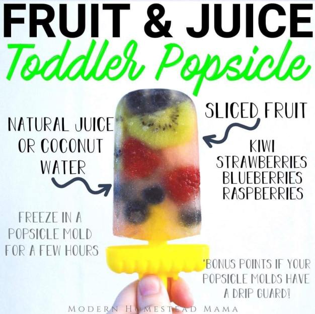 Fruit & Juice Popsicle