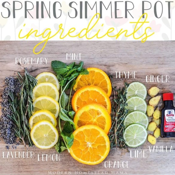 Simmer Pot Recipes for a Clean Smelling Home
