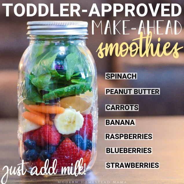 Make-Ahead Smoothies for Toddlers (Zero Waste)   Modern Homestead Mama