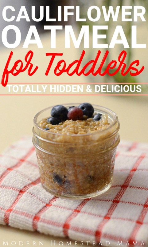 Cauliflower Oatmeal for Toddlers (Healthy Hidden Veggie Breakfast) | Modern Homestead Mama