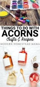 Acorn Recipes and Crafts: What to do with all those Acorns