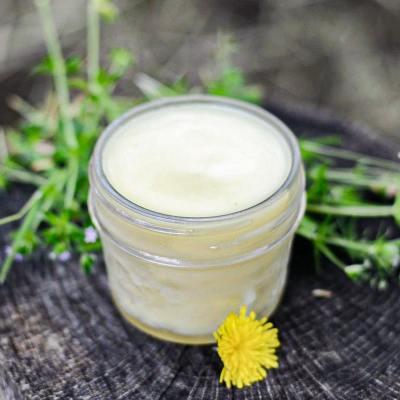 Dandelion Salve Recipe & Uses