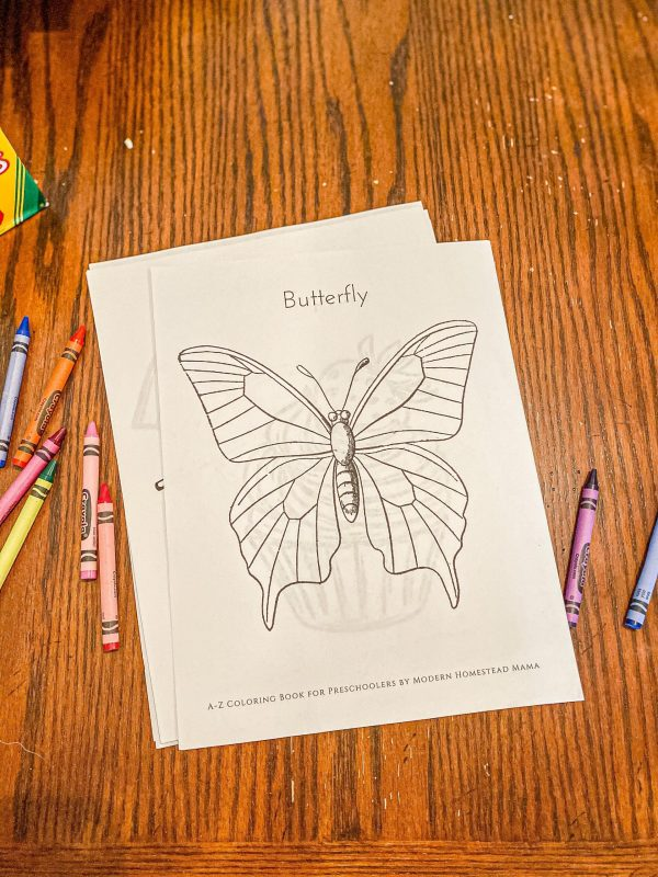 A-Z Coloring Book for Preschoolers Butterfly