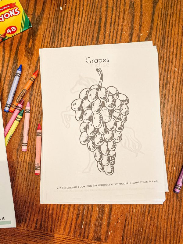 A-Z Coloring Book for Preschoolers Grapes